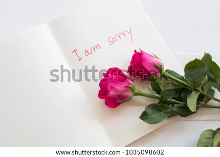 Sorry Message Card Handwriting Pink Rose Stock Photo (Royalty Free - apology card messages