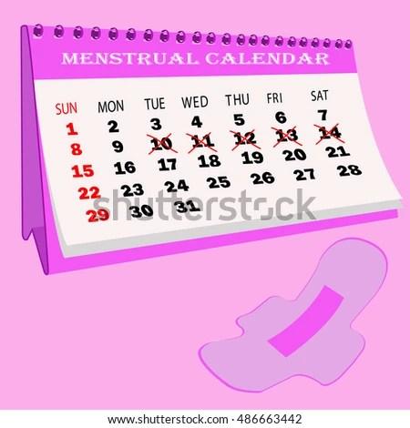 Menstruation Calendar Cotton Tampons Woman Hygiene Stock Vector
