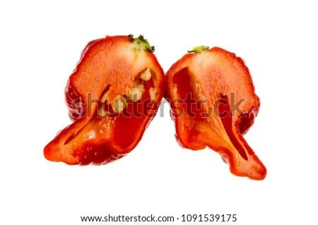 Carolina Reaper Medium Sized Chili Pepper Stock Photo (Download Now