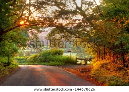 Wallpaper Images Of Fall Trees Lined Lake Country Lane Stock Images Royalty Free Images Amp Vectors