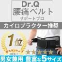 【信頼の楽天ランキング1位】 Dr.Q 腰痛ベルト <コスパ抜群 2個でもお値段変わらず> 大きいサイズ Wのベルトでしっかり固定 腰痛対策..