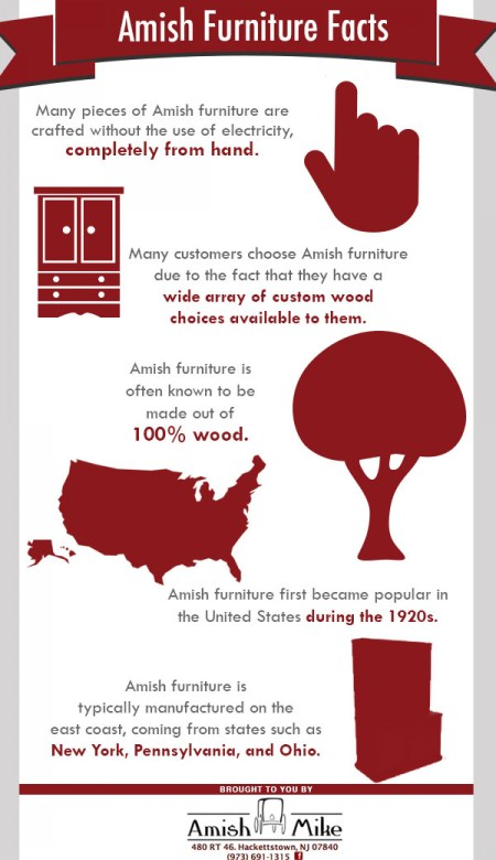 Amish Culture Facts