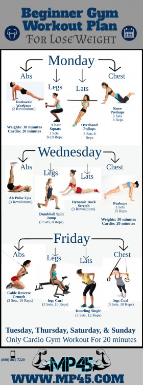Beginner Gym Workout Plan For Lose Weight Visually - gym workout for weight loss