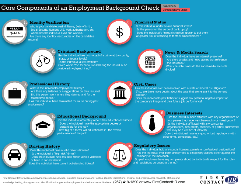 Core Components of a Background Check Visually