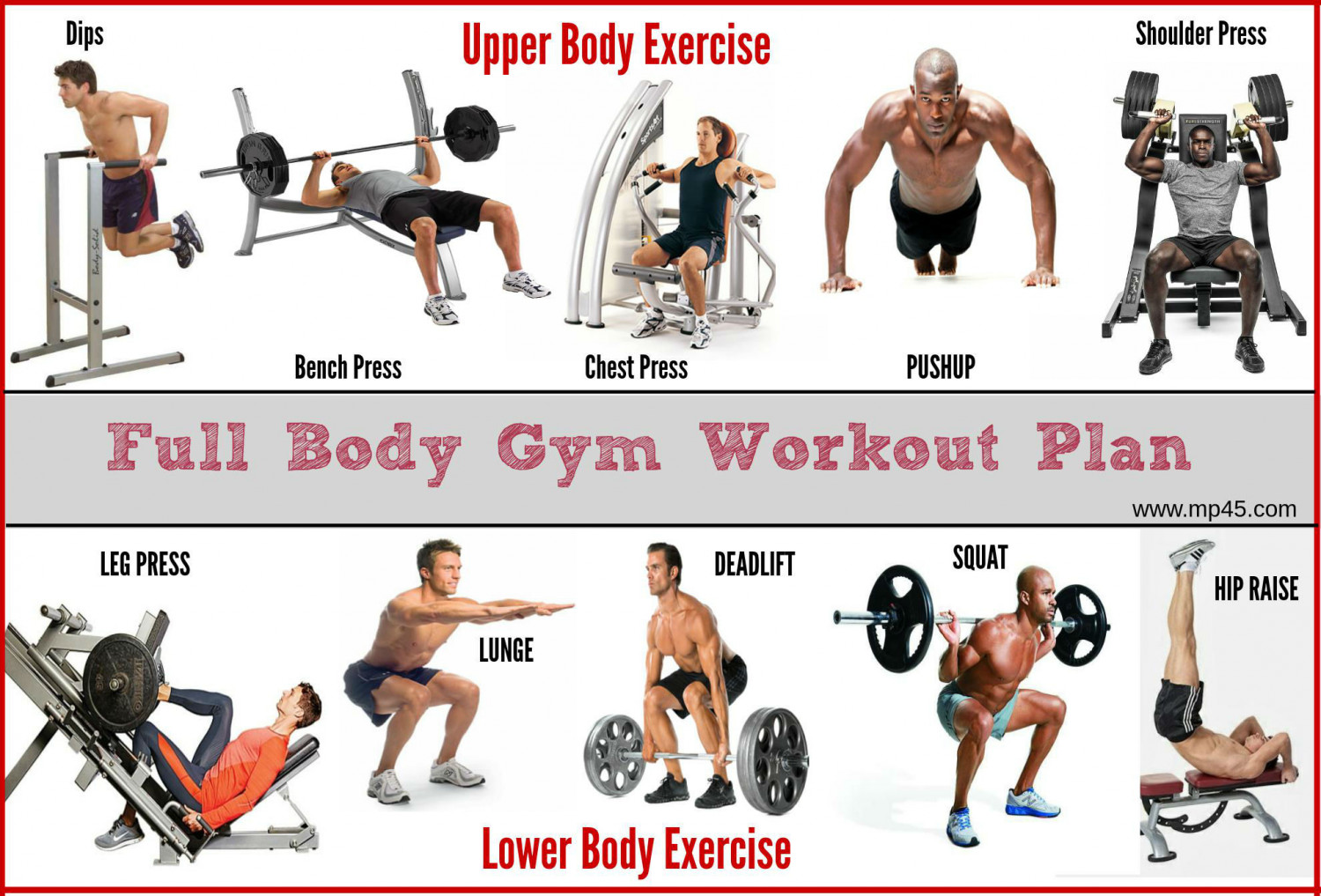 Gym Workout Chart For Chest For Men Convenient 7 Day Full Body Workout Plan My Fitness