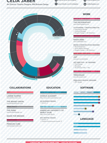 Infographic Resume Visually - infographic resumes