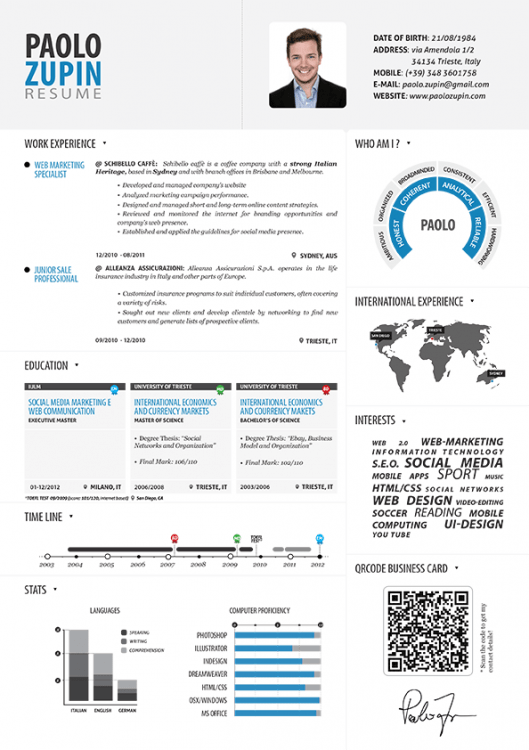Paolo Zupin - Infographic Resume Visually - International Experience Resume