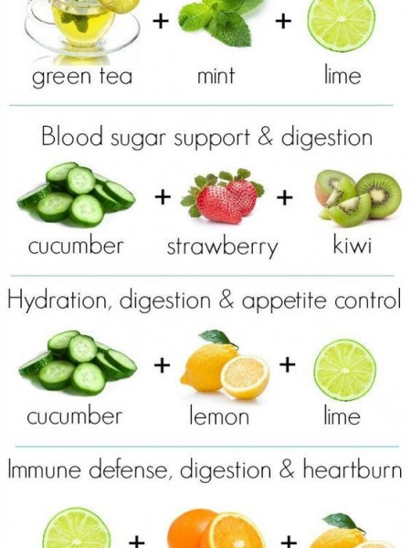 diet plan Infographics Visually