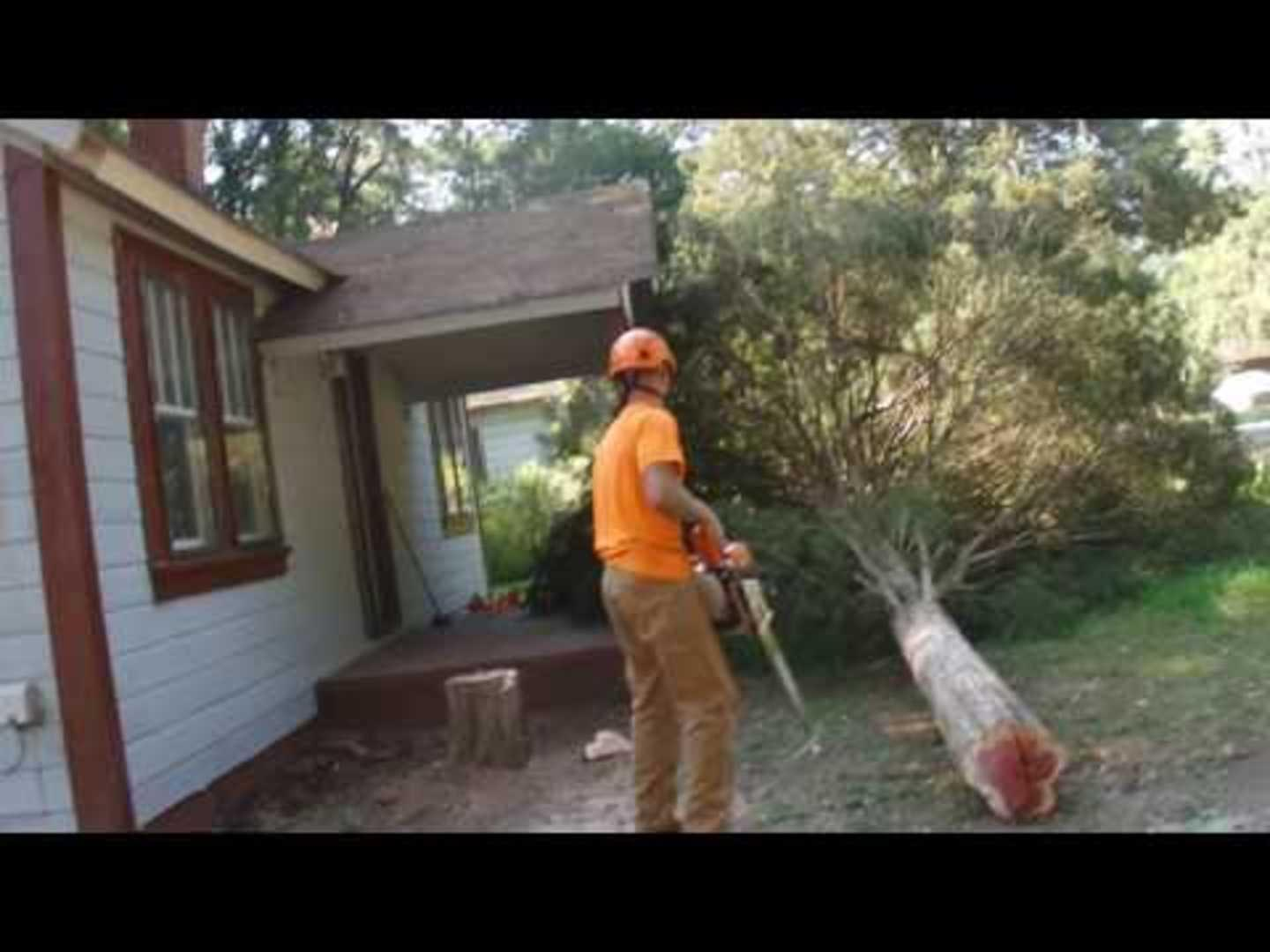 Tree Cutter Tree Cutter Breaks Fence Jukin Media Inc