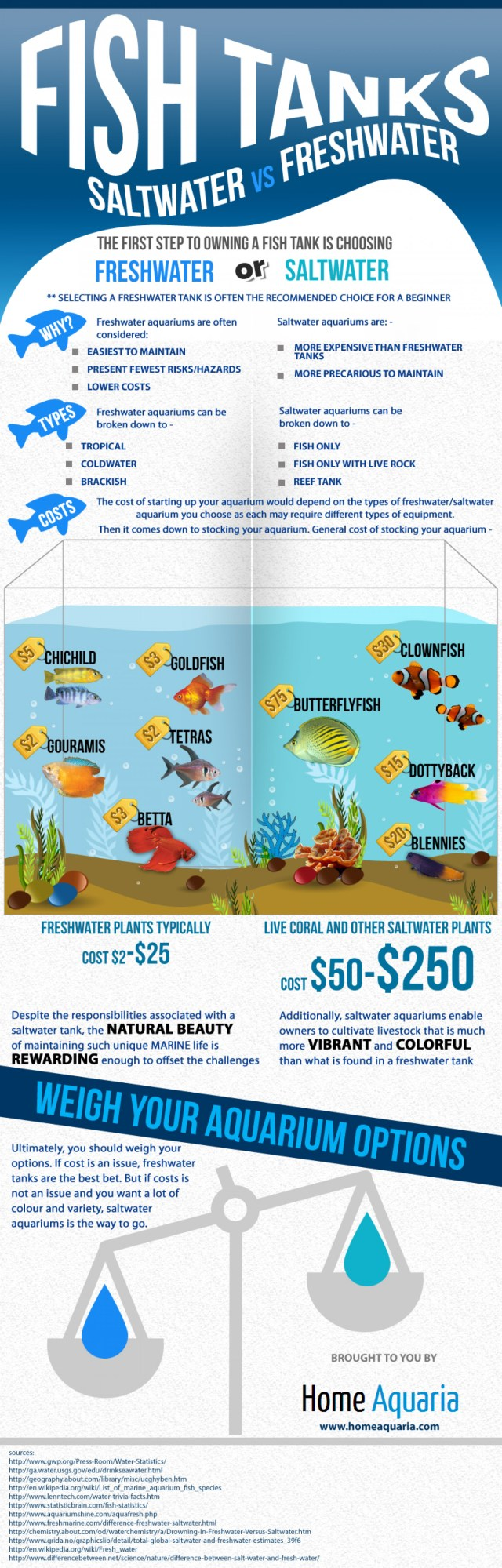 FISH TANKS Saltwater VS Freshwater Infographic