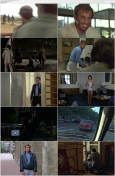 Download Subtitle indo englishThe Professional (1981) BluRay 720p