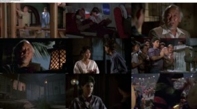 movie screenshot of The Karate Kid Part II fdmovie.com