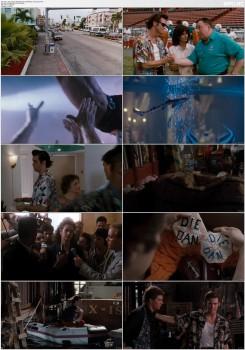 Download Subtitle indo englishAce Ventura: Pet Detective (1994) BluRay 720p