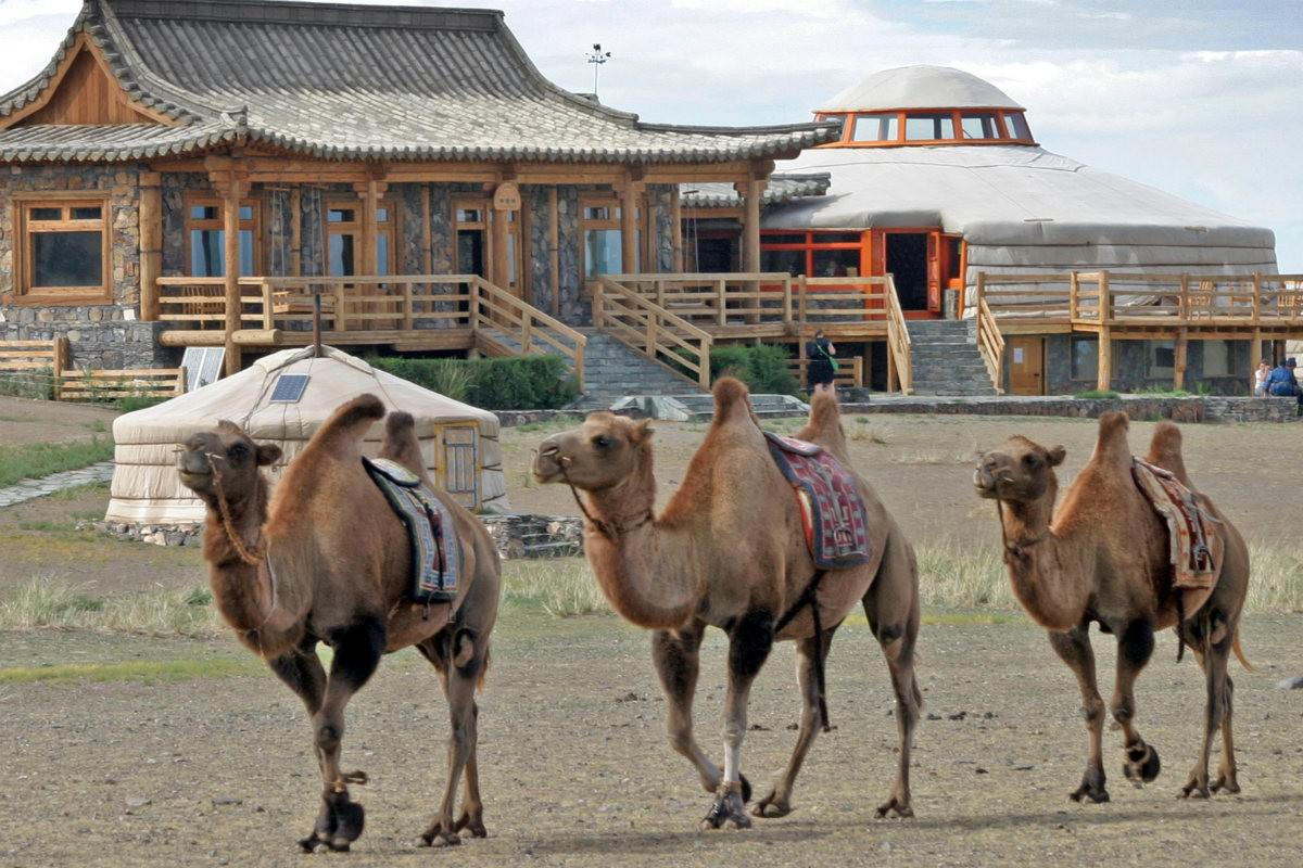 Travelling Mongolia Blog Traveling Mongolia Is Easier Than You Think