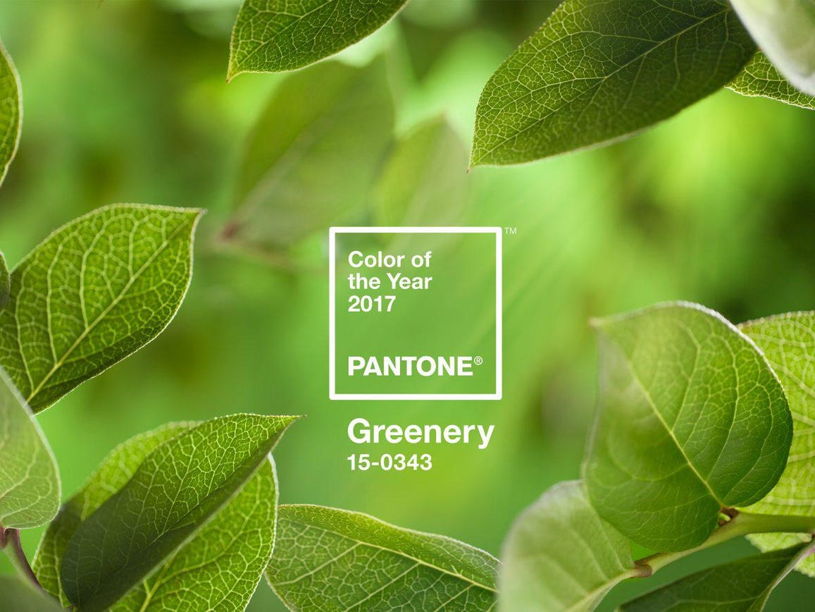 Greenery Pantone Pantone S Color Of The Year 2017 Is Inspired By Nature