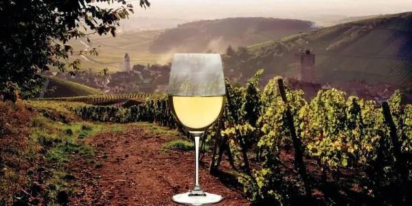 Twenty Best White Wines Of Alsace