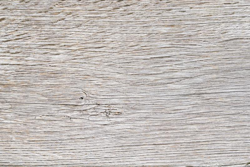 Old White Oak Wood For Background Or Wooden Texture
