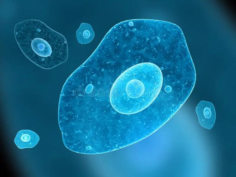 Danger 3d Wallpaper Download Amoeba Stock Illustration Illustration Of Microbe