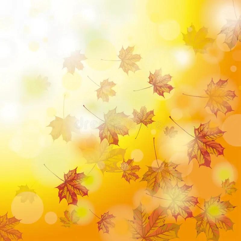 Autumn Foliage Fall stock vector Illustration of paper - 45827660