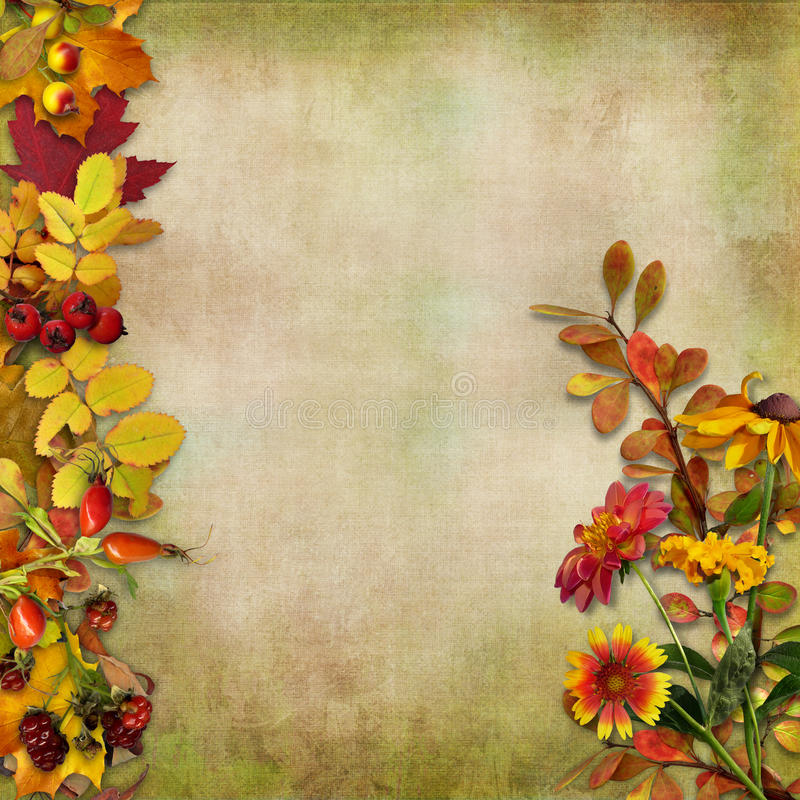 Fall Sunflowers Wallpaper Autumn Leaves Flowers And Berries On A Vintage Background