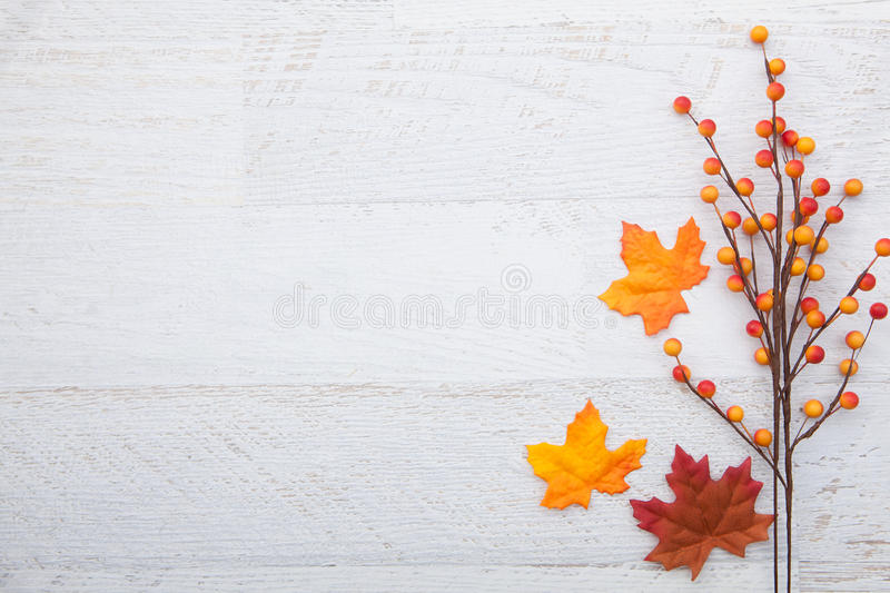 Autumn Thanksgiving Background Stock Image - Image of frame, leaf - free fall powerpoint background