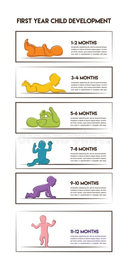 Baby Development Stages Milestones First One Year- Colorful