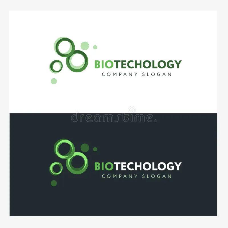 company bio template