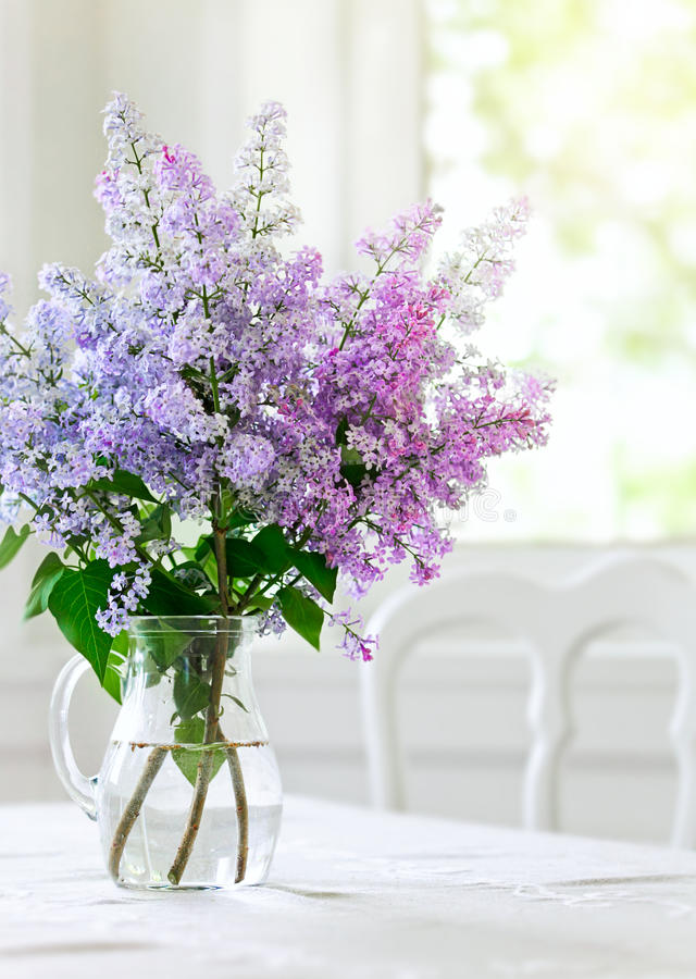 Lila Vase Bunch Lilac Flowers In Vase On Table Stock Image - Image