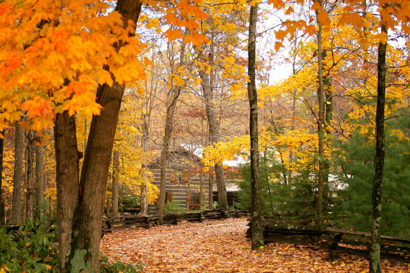 4k Fall Michigan Wallpaper Cabin In The Woods With Autumn Stock Photo Image 1432488