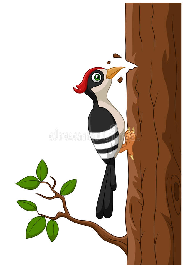 Animated Penguin Wallpaper Cartoon Woodpecker On A Tree Stock Vector Image 51245344