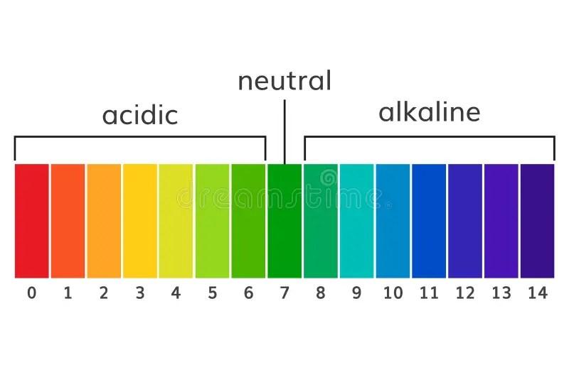 Chart Ph Alkaline And Acidic Scale Vector Stock Vector