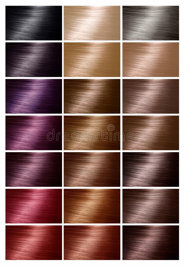 Color Chart For Hair Dye Tints Hair Color Palette With A Range - hair color chart