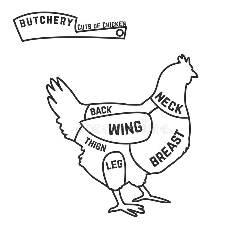 chicken cuts diagram chicken cuts