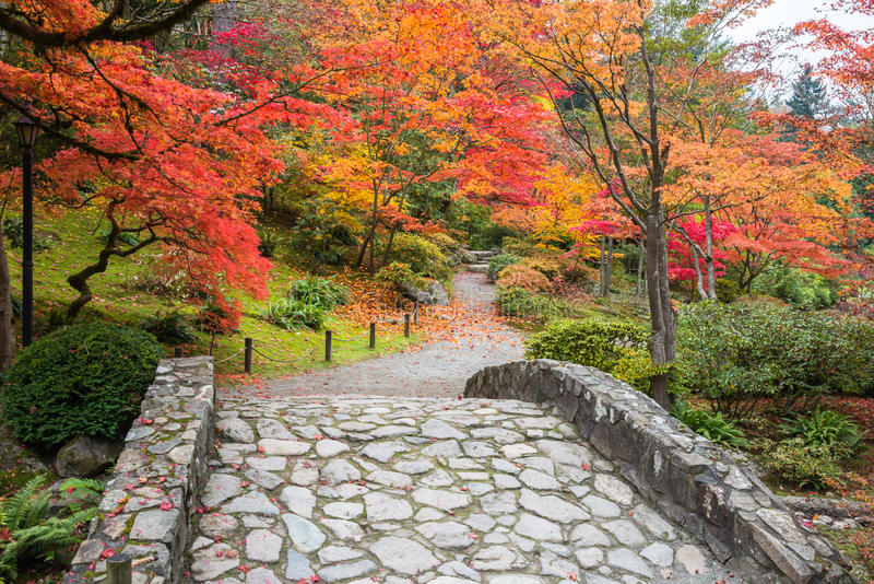 Fall Leaves Wallpaper Windows 7 Fall Color Landscape With Stone Bridge And Walking Path