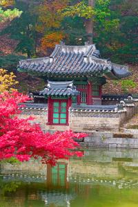 Fall Season In The Secret Garden, Seoul Stock Image ...