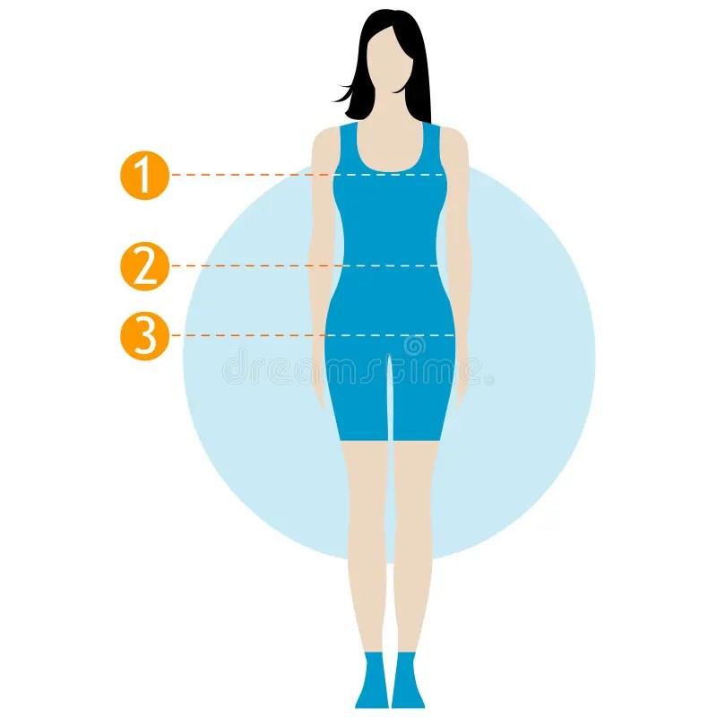Female Body Measurement Chart Figure Of The Girl, Model In