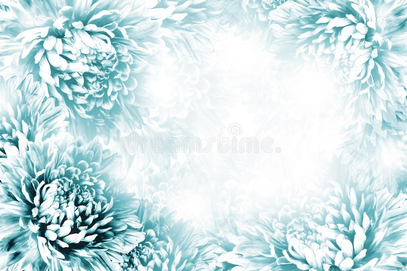 Floral Turquoise-white Beautiful Background Flower Composition