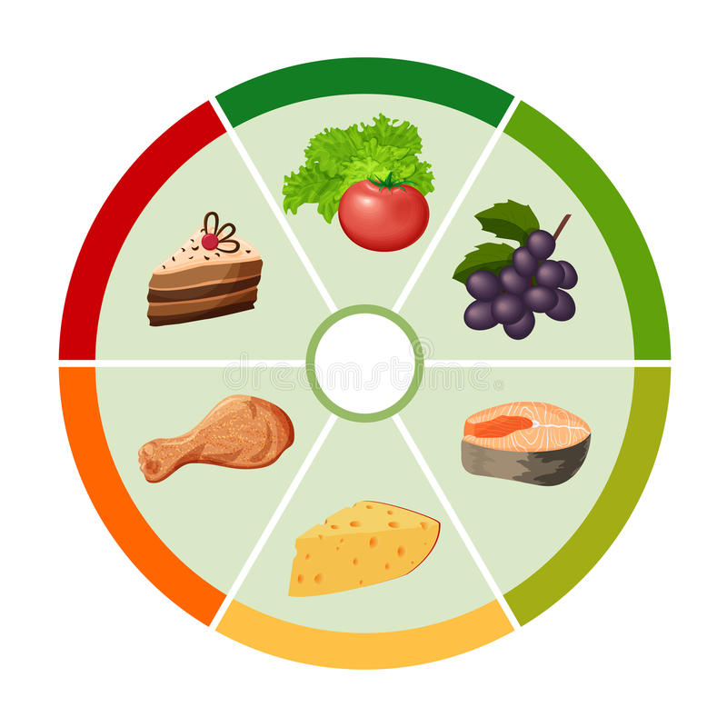 The Food Color Wheel Chart Stock Vector - Image 62166034 - food coloring chart