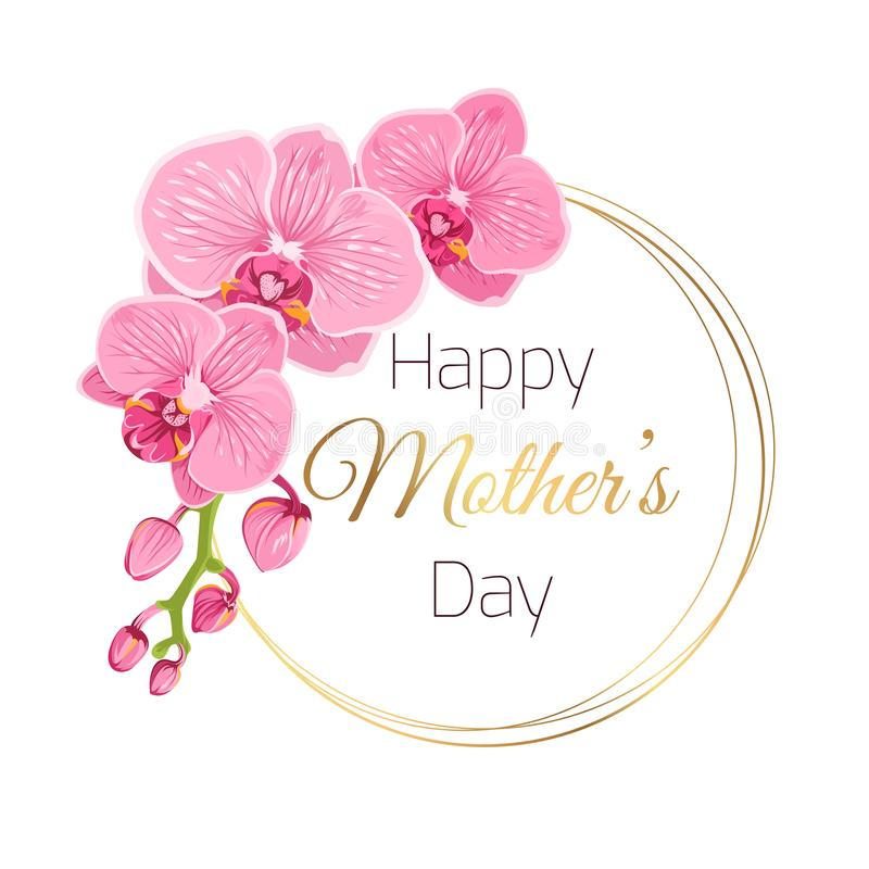 Mothers Day Card Pink Orchid Spring Flowers Wreath Stock Vector