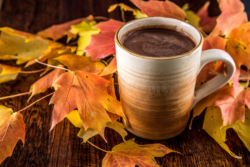 Vector Wallpaper Fall Colors Hot Chocolate In The Fall Stock Photo Image 48566057