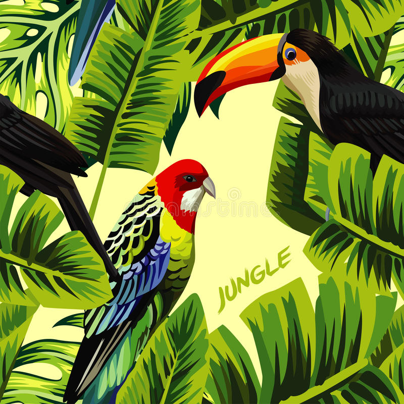 Bird Of Paradise Hd Wallpaper Jungle With Toucan Parrot Banana Leaves Stock Vector