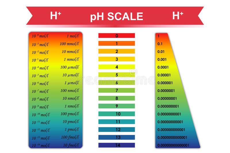 PH Scale Chart Vector Illustration Stock Vector - Illustration of - ph chart
