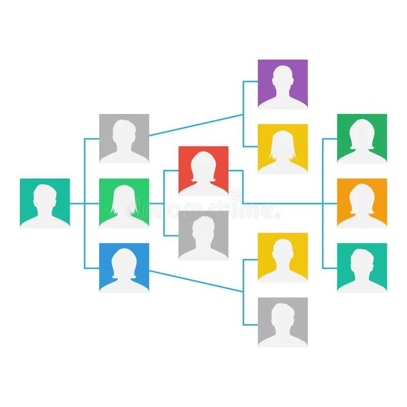 Project Team Organization Chart Vector Colleagues Working Together - project organization chart
