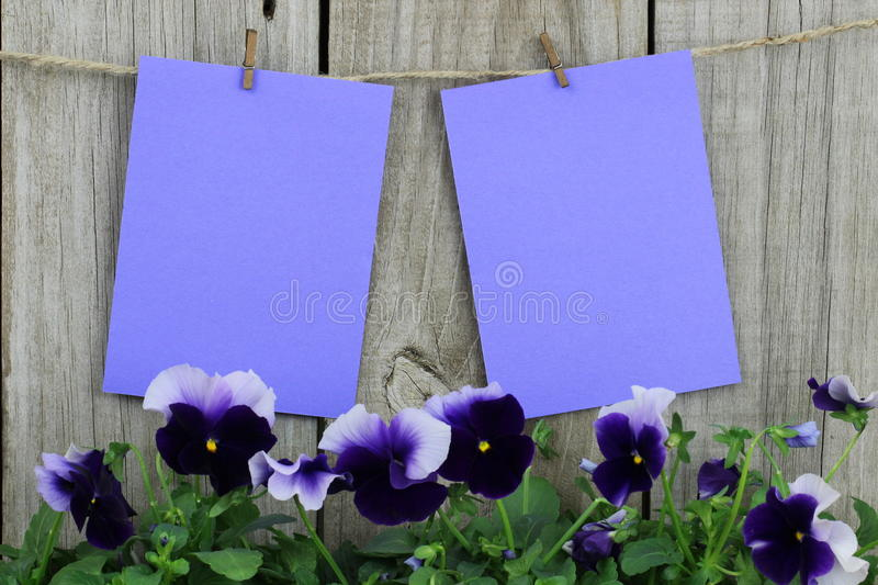Purple Note Cards Hanging On Clothesline With Purple Flower Border - purple note cards