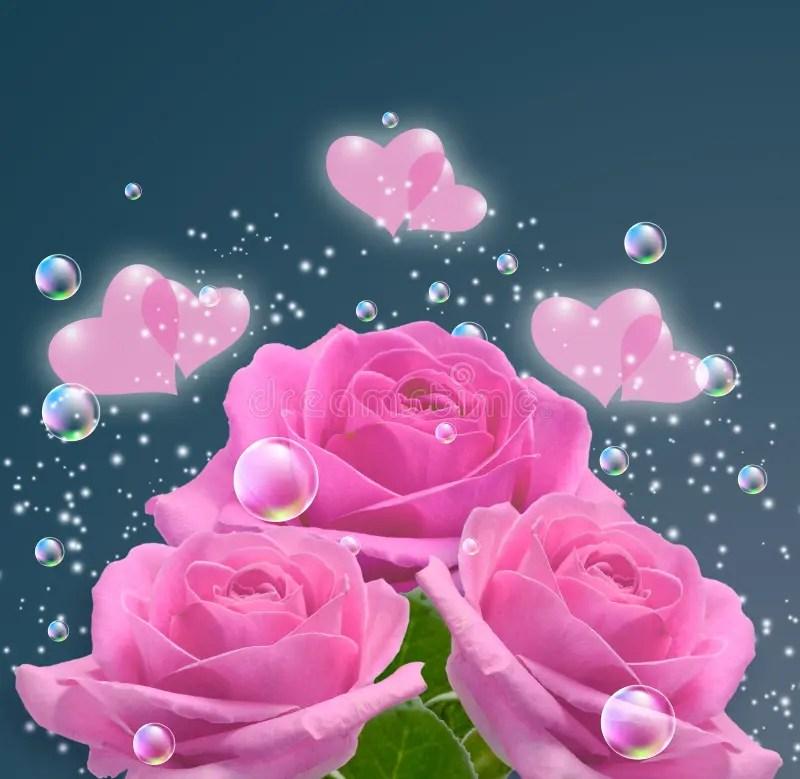 Rosas y corazones rosados imagen de archivo Imagen de floral - 52999443 - rosas y corazones