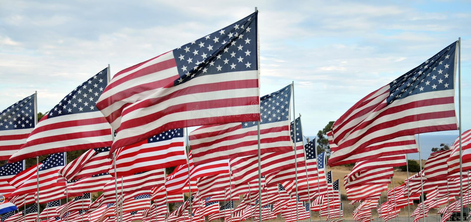 Rows of American Flags stock photo Image of free, forces - 59459656