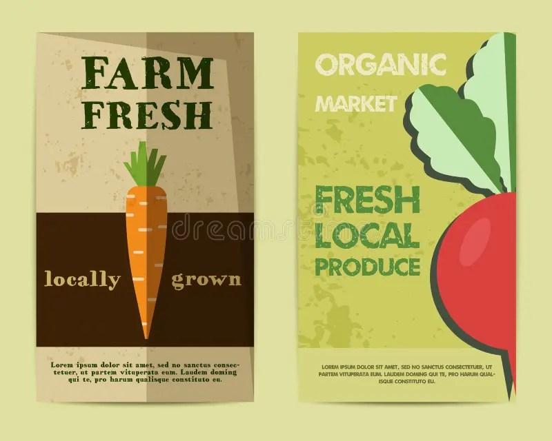 Set Of Stylish Farm Fresh Flyer, Template Or Stock Vector - retro brochure template