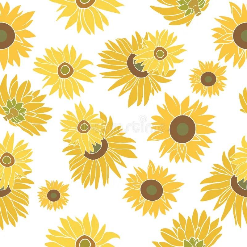 Fall Sunflower Wallpaper Sunflower Vector Seamless Pattern On The White Stock Image