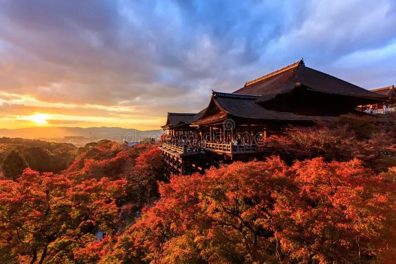 Desktop Wallpaper Fall Foliage Sunset At Kiyomizu Dera Temple In Kyoto Editorial Stock