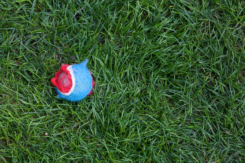 Tattered Red And Blue Tennis Ball On Grass Stock Image - Image of - why is there fuzz on a tennis ball